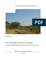 Sillen 2011 Lithic technology in southern Mozambique.pdf