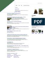 Osos - Buscar Con Google