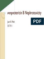 Amphotericin B Nephrotoxicity
