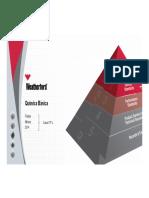 Quimica Basica PDF
