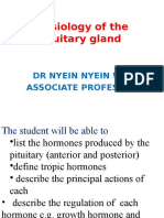 -NNW_pituitary_gland(2).pptx