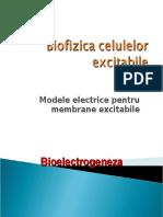 C5 Ok Bioelectricitate Modele Electrice Pentru Membrane Excitab