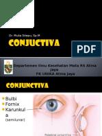 Conjunctiva -