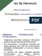 Patrones de Herencia mitocondrial