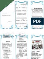 TRIPTICO GRUPO 4.doc