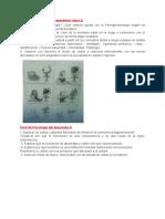 Resumen Parcial DesarrolloIII.docx