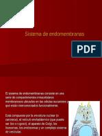 203_Sistema de Endomembranas