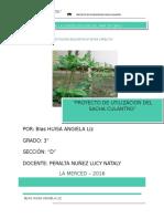 Angela Proyecto