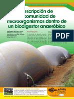 Descripción de La Comunidad de Microorganismos Dentro de Un Biodigestor Anaeróbico