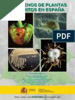 Patogenos de Plantas Descritos en España