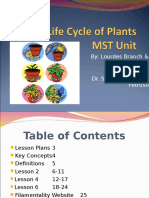 The+Life+Cycle+of+Plants+MST+Unit.ppt