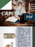 carbajo murga sergio (presupuesto de capita)l.pptx