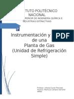 Proyecto Instrumentacion Gas Natural