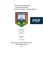 portofolio CKD.docx