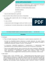 C16-Volano.pdf