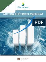 Guia Técnico Motor Premiun