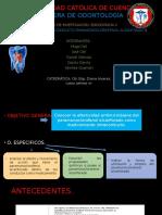 Paramonoclorofenol-alcanforado-TFI
