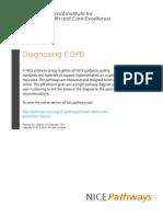 Chronic Obstructive Pulmonary Disease Diagnosing Copd