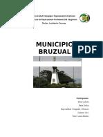 Informe de Cultura Mcpo Bruzual