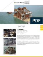 Fact Sheet Castor