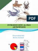 2-Clase de artrópodos 2010.pdf