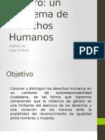 Conferencia Violencia de Género, Problema de derechos humanos.pptx