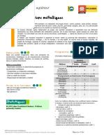 BTS+Constructions+métalliques.pdf