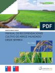 Manual Crop Check Arroz.pdf