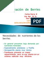 Fertilizacion  de Berries.pdf