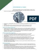 Osteoporosis Factsheet