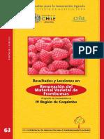 63_Libro_ Frambuesas.pdf