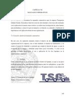 Capitulo 7 Manuales Corporativos