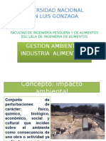 Gestion Ambiental 3 (2) EIA