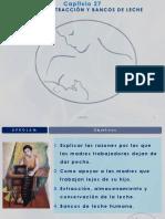 CAP 27.- TRABAJO EXTRACCI_N Y BANCOS DE LECHE.pdf