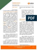 Ficha 13 Pruebas Examenes Orales