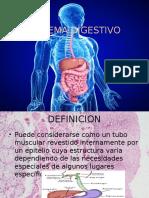 Sistema Digestivo Dos Esta Bien Esto