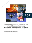 Rpas for Em and Ps Strategy and Action Planv1