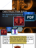 Uropatia Obstructiva Baja