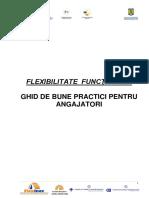 07_Ghid_bune_practici_FF_angajatori.pdf
