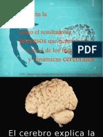 1. Enfoque Neurocientífico