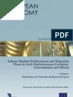 Labour Markets Performance & Migration Flows in Arab Mediterranean Countries