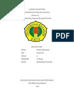 Nunik Herawati (e1a013035)_a