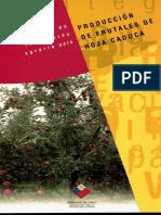 010300 F981 2003_Estrategia innovación frutales hoja caduca.pdf