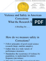 Violence SafetyCorrectionsResearchBrief