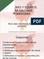 galponesyequiposparagallinasponedoras