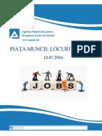 Piata muncii din Republica Moldova la 12.07.16