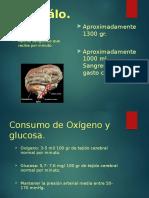 Fisiopaología EVC
