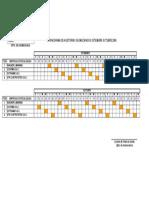 CRONOGRAMA DE AUDITORIAS GEOMECANICAS AGOSTO.xls