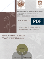 Cisticercosis_porcina cx