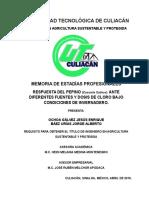 MEMORIA DE ESTADIAS  PEPINO MAYO.doc
